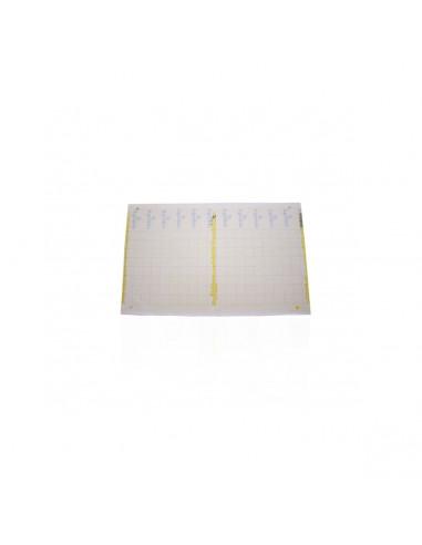 Trampa Adhesiva Amarilla 40x25cm...
