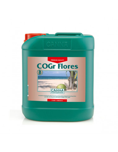 Canna Cogr Flores B