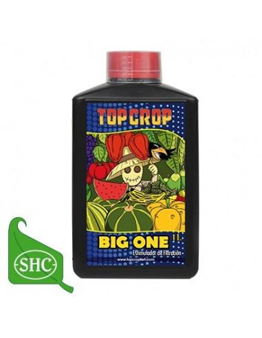 Top Crop Big One