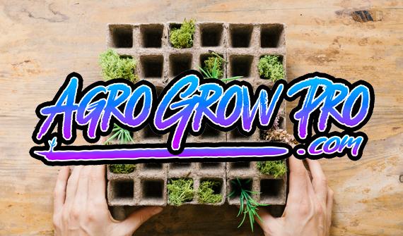 Agrogrowpro, grow shop en Blanes
